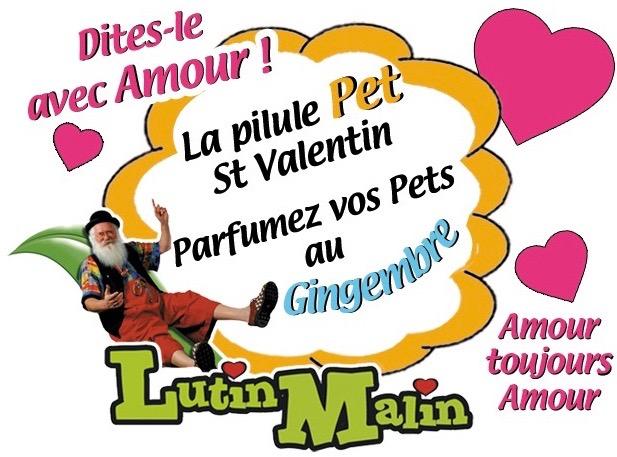 st-valentine-s-ginger-fart-pill 2