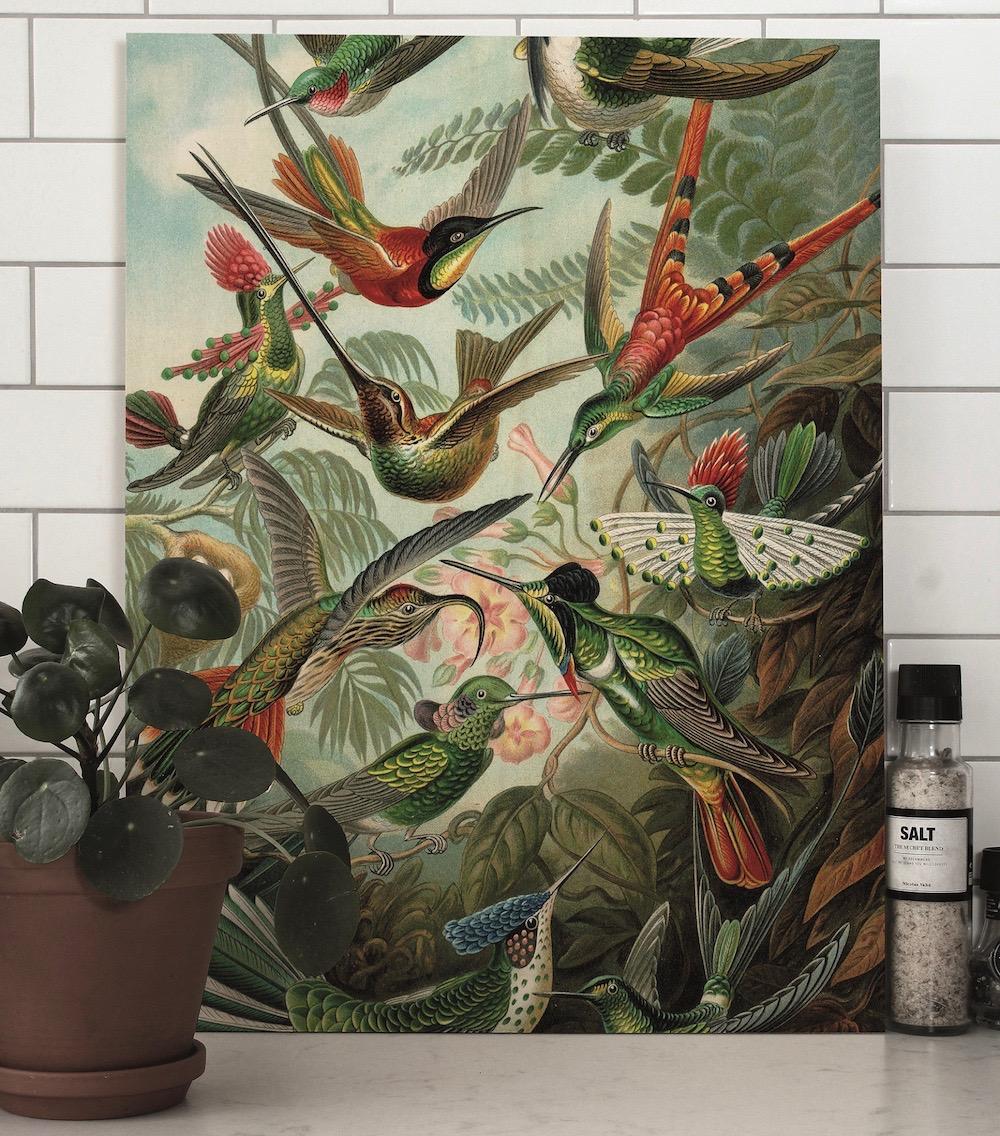 Styling-ID-Tips-en-Trends-Houten-muurdecoraties-van-KEK-Amsterdam-print-op-hout-exotic-birds