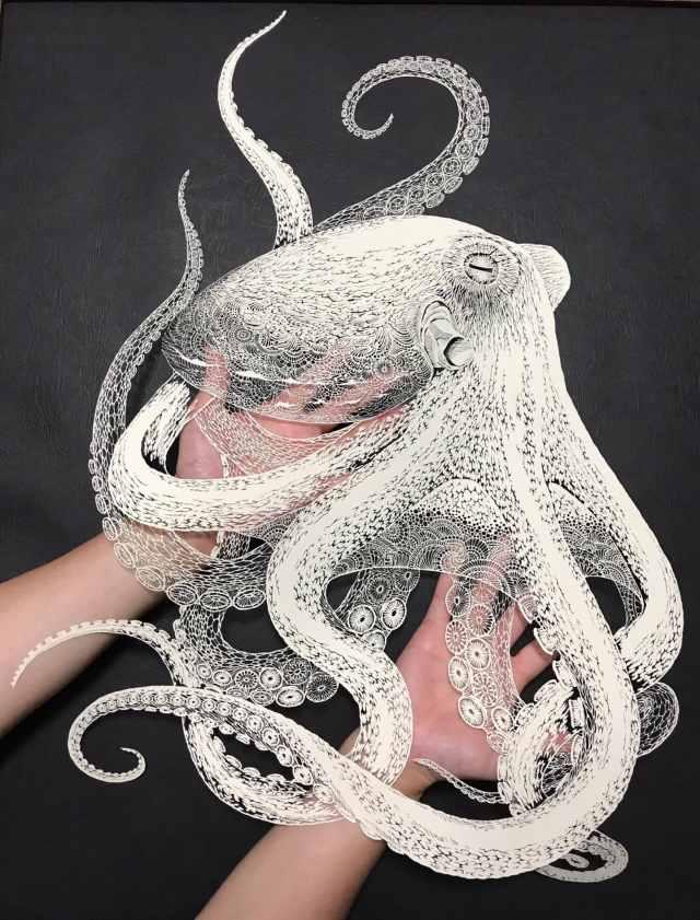 octopus-papier-4.jpg