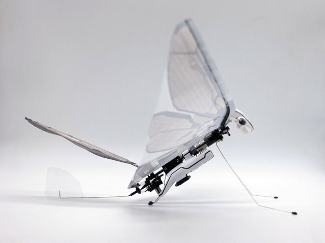 metafly-biometric-robot-8.jpg