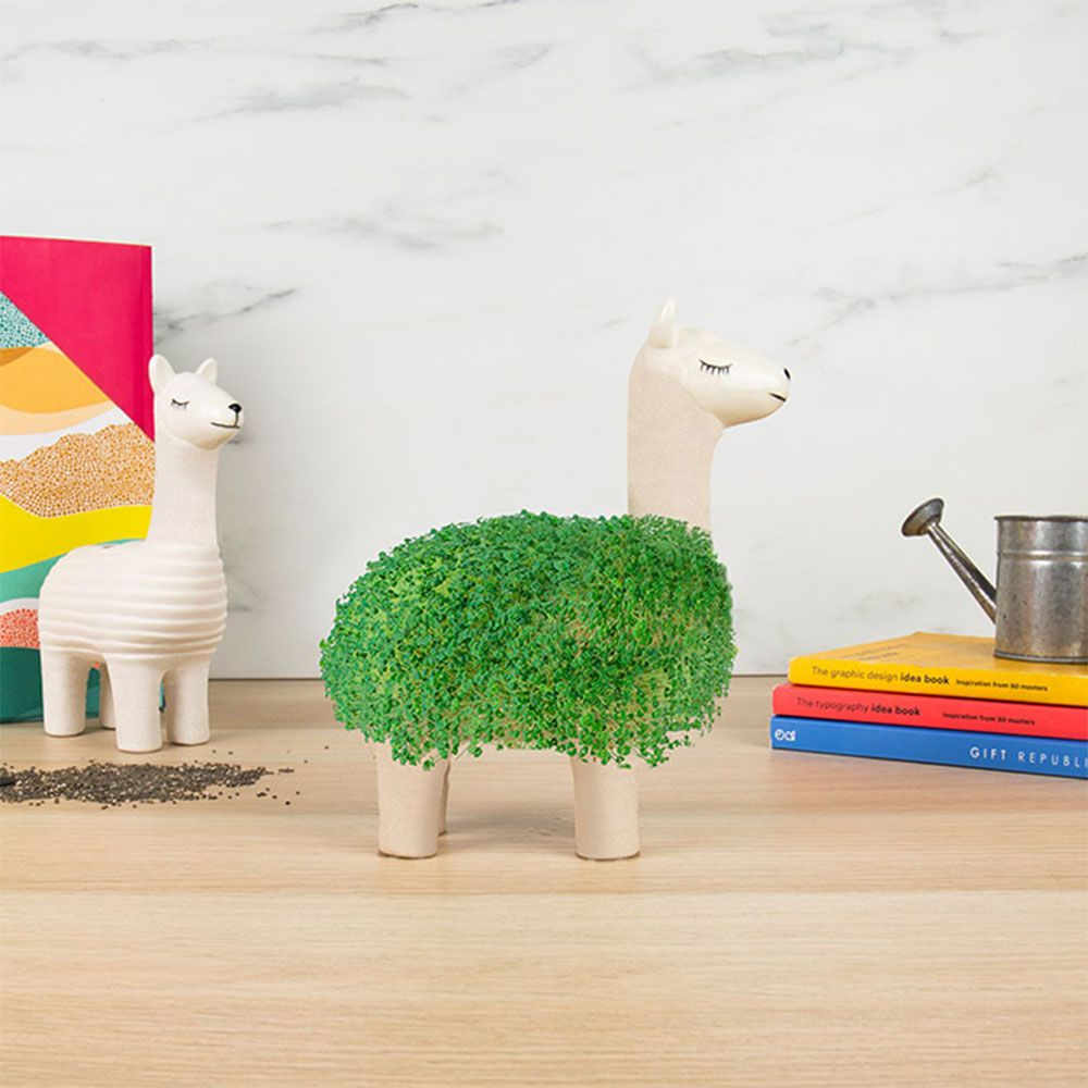 green-lama-planter-1.jpg